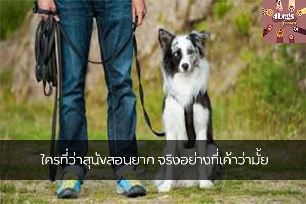 ใครที่ว่าสุนัขสอนยาก จริงอย่างที่เค้าว่ามั้ย สัตว์น่ารัก สัตว์เลี้ยงแปลก ทริคการเลี้ยงสัตว์ เทคนิคการฝึกสุนัข